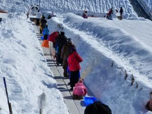 ソリ遊び 雪遊び バスツアー