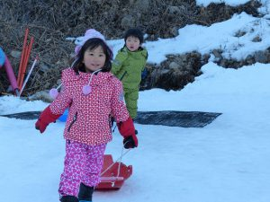 そり遊び 雪遊び